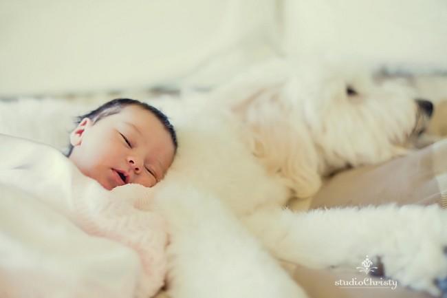 Newborn-03.jpg