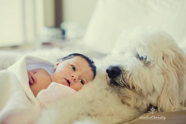 Newborn-04.jpg